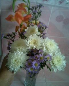 Flowers for forgiveness